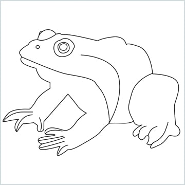 Draw a Frog