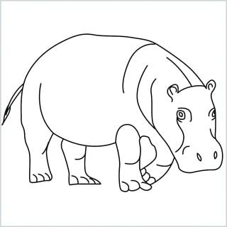 Draw a Hippo