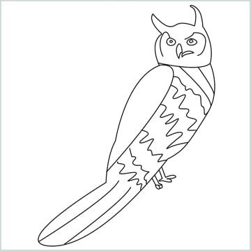 Draw a Owl