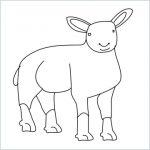 Draw a Sheep