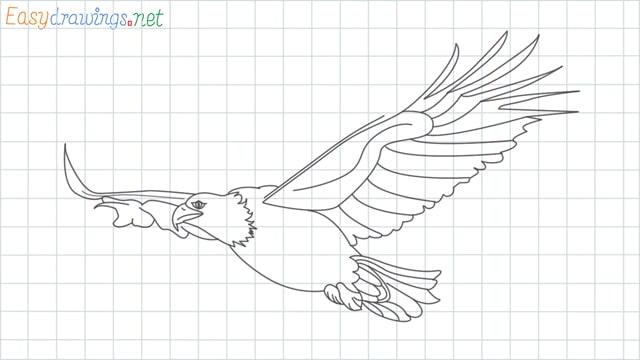 Eagle grid line drawing