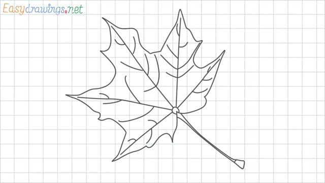 Fall leaf grid line drawing