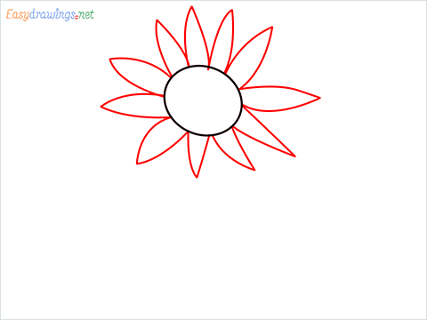 How To Draw A Easy Sunflower Step (2)