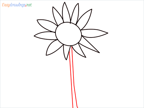 How To Draw A Easy Sunflower Step (3)