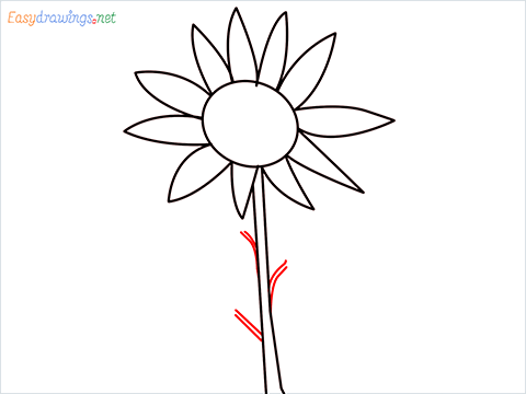 How To Draw A Easy Sunflower Step (4)