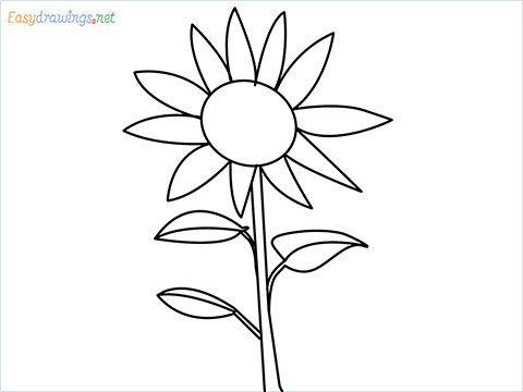 How To Draw A Easy Sunflower Step by Step for Beginners