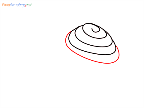 How To Draw Snail Step (4)