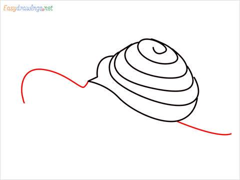 How To Draw Snail Step (6)
