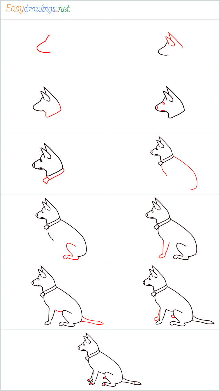 My home dog drawing pin for pinterest