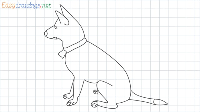 My home dog grid line drawing