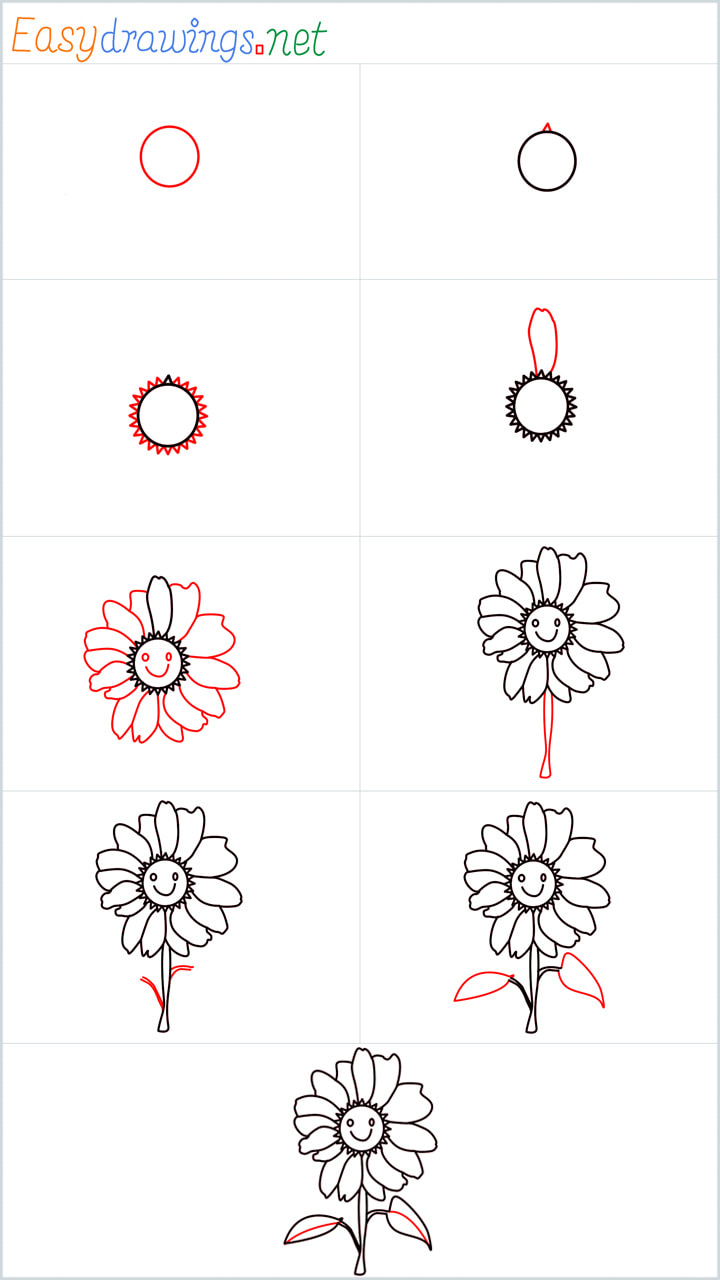 all outline for Daisy drawing example
