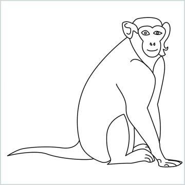 draw a monkey