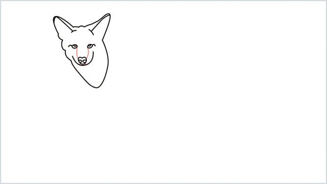 how to draw a coyote step (7)