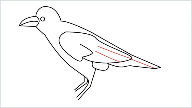 how to draw a crow step (11)