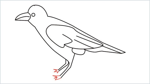how to draw a crow step (12)