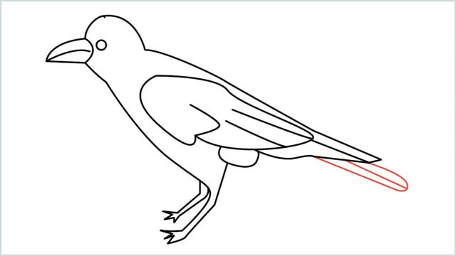 how to draw a crow step (13)