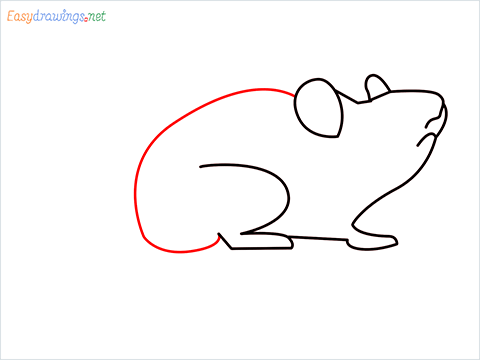 how to draw a cute mouse step (5)