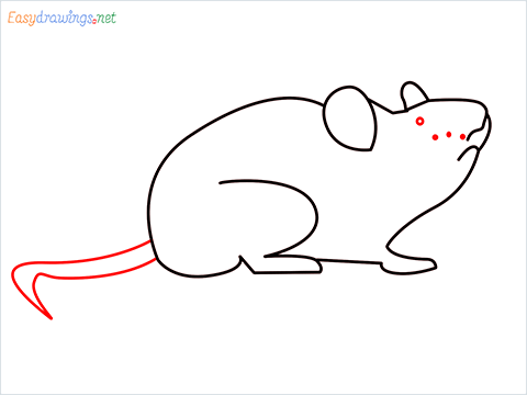 how to draw a cute mouse step (6)