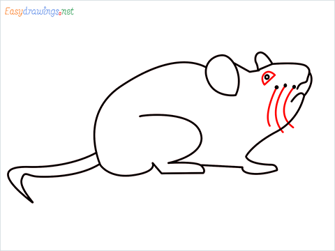 how to draw a cute mouse step (7)