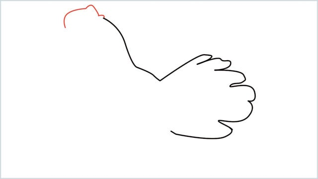 how to draw a dove step (3)