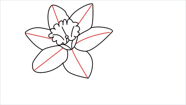 how to draw a easy daffodil step (10)