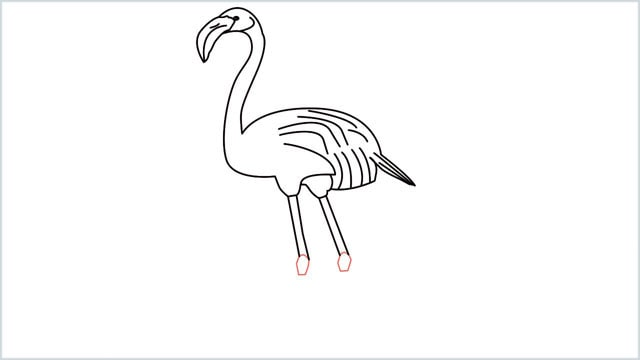 how to draw a flamingo step (10)