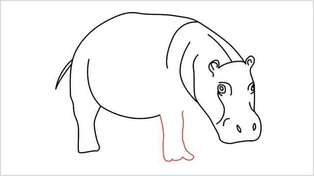 how to draw a hippo step (10)