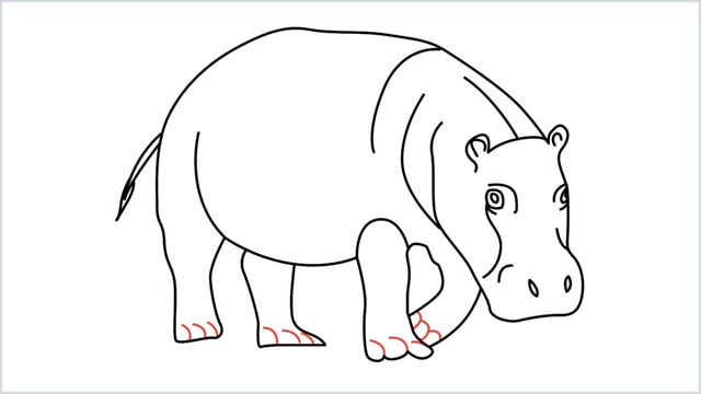 how to draw a hippo step (14)