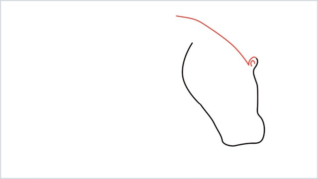 how to draw a hippo step (2)
