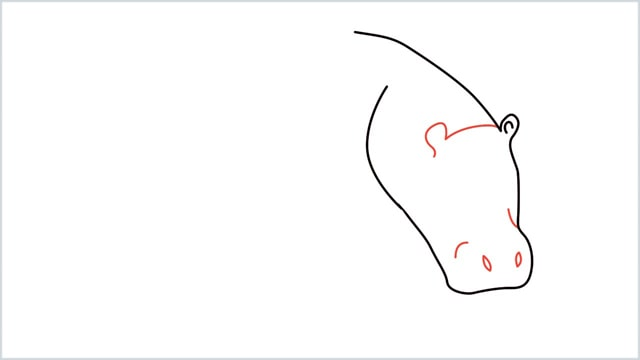 how to draw a hippo step (3)