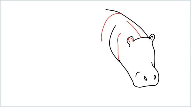 how to draw a hippo step (4)