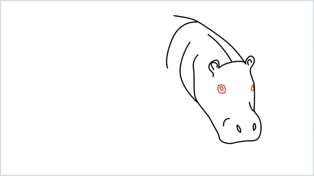 how to draw a hippo step (5)