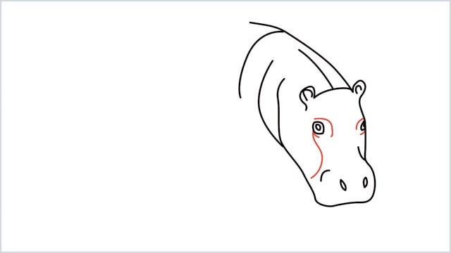 how to draw a hippo step (6)