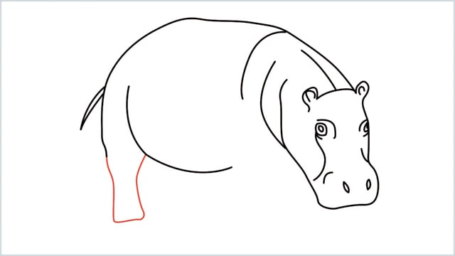 how to draw a hippo step (9)