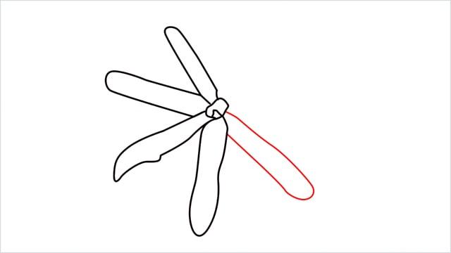 how to draw a jasmine flower step (7)