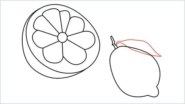 how to draw a lemon step (9)