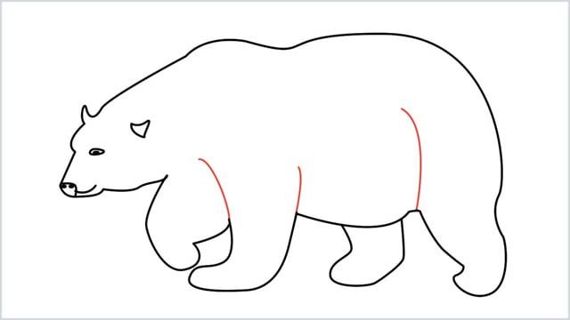 how to draw a polar bear step (10)