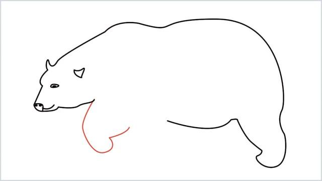 how to draw a polar bear step (7)