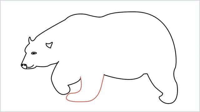 how to draw a polar bear step (8)