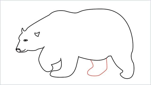 how to draw a polar bear step (9)