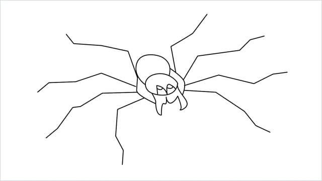 how to draw a spider