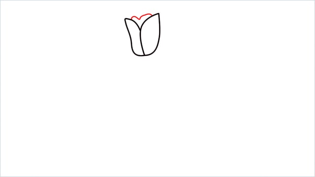how to draw a tulip flower step (4)