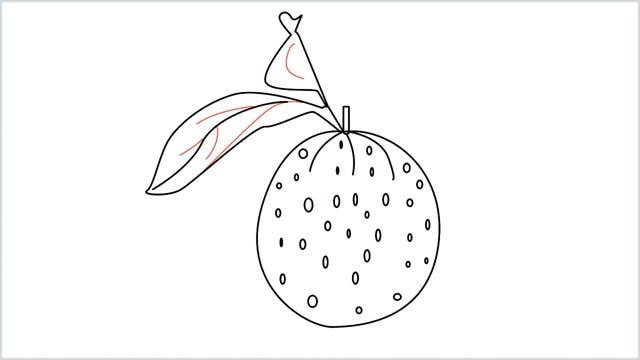 how to draw an orange step (8)