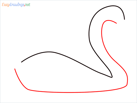 How To Draw A Beautiful Swan Step (2)