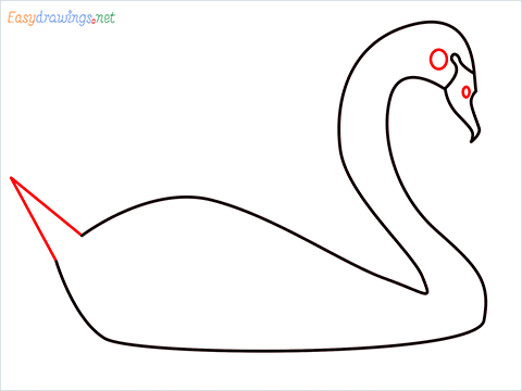 How To Draw A Beautiful Swan Step (4)