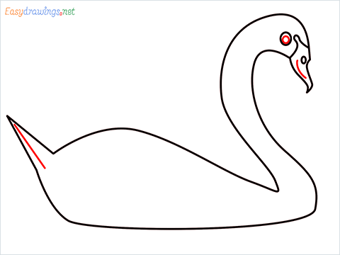 How To Draw A Beautiful Swan Step (5)