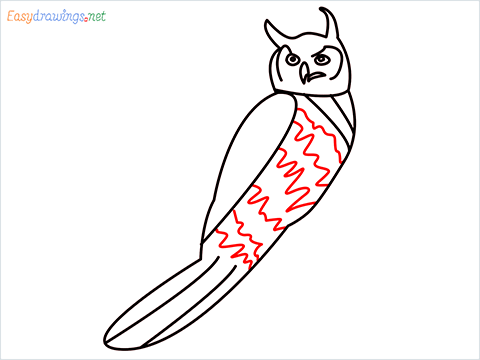How To Draw A Easy Owl Bird Step (10)