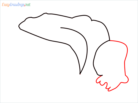 How To Draw A Frog Easy Step (4)