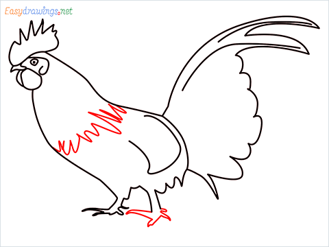 How To Draw A Rooster (cock) Step (11)