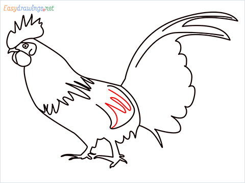 How To Draw A Rooster (cock) Step (12)